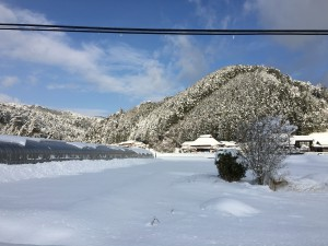 先日の大雪。